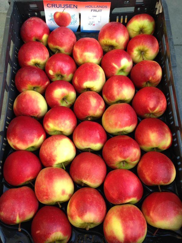 118. Doos Elstar appelen